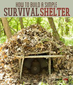 Emergency Shelter DIY | Basic Survival Skills