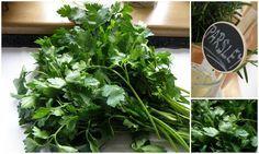 petržlenovy liek Nordic Interior, Korn, Parsley, Home Remedies, Spinach, Gardening, Fruit, Vegetables, Health