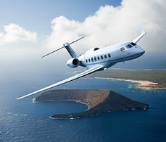 Next round the world flight in private luxury - with the dogs!