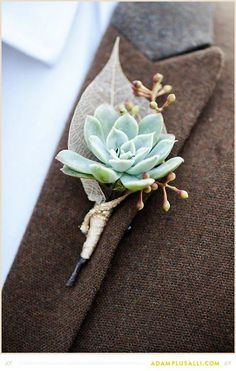 Wedding Gifts Diy - Succulents make an outstanding place card holder since they double as a party gift. Bouquet Succulent, Succulent Boutonniere, Boutonnieres, Prom Flowers, Wedding Flowers, Flower Decorations, Wedding Decorations, Wedding Ideas, Wedding Centerpieces