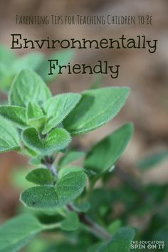 How can I Teach My Child to Be Environmentally Friendly: Use reusable bags, compost, recycle, garden and MORE!