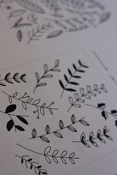 Floral Drawing by Nancy Straughan. These simple leaves could be nice as s background