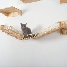 Quality Cat wood Scratch Board Cat Wall-mounted Scratcher Pad Kitten Scratching Sisal mat Furniture Sofa Claw Protector Pads with free worldwide shipping on AliExpress Mobile Cat Stairs, Cat Tree House, Cat Activity, Wood Cat, Cat Shelves, Photo Chat, Cat Climbing, Cat Scratcher, Pet Furniture