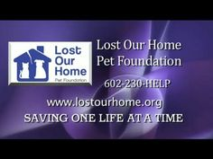 Lost Our Home Pet Foundation Mission Video.....I volunteer  for LOH...PLEASE don't abandon your pets! There options, we can help you find ways to keep your fur baby.