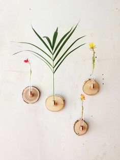 Kreative Blumenvasen für den Frühlingslook / creative flower vase by madeva Holzliebe via DaWanda.com