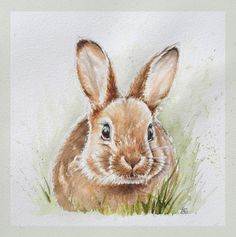 Discover recipes, home ideas, style inspiration and other ideas to try. Bunny Painting, Bunny Drawing, Spring Painting, Bunny Art, Painting & Drawing, Animal Sketches, Animal Drawings, Cute Drawings, Watercolor Animals