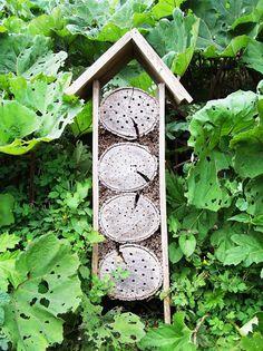 Hôtel a insectes -ins-sissi-de-kroon