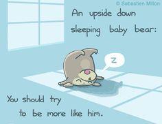 Upside Down Sleeping Baby Bear - Sebastien Millon / Art & Illustration
