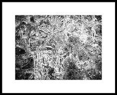 Black And White Framed Print featuring the photograph Frozen Disarray by Karen Stahlros #photography #abstractphotography #blackandwhitephotography #artforsale #wallart #homedecor
