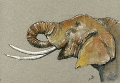 Elephant Head Africa Animal 8x5 Original Art Watercolor Painting by Juan Bosco | eBay