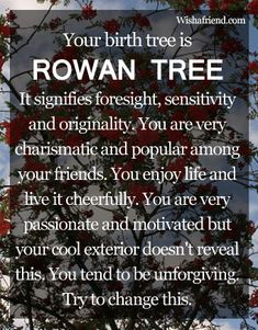 In Celtic astrology, the Rowan represents people born during the second Lunar month of the year from January to February Libra, Age Of Aquarius, Celtic Astrology, Tarot, Celtic Tree, Birth Flowers, Maple Tree, Birth Month, Rowan