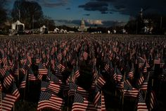 'Field of Flags' on the National Mall Represents the People Who Cannot Attend the Inauguration. - The New York Times