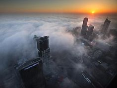 Fog in City of Melbourne at Sunrise from Eureka Skydeck. Cool Pictures, Cool Photos, Amazing Photos, Eureka Tower, Landscape Photography, Nature Photography, Melbourne Cbd, Melbourne Australia, Ciel