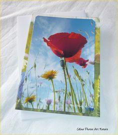 """Carte double """" Fleurs des champs """" 10,5x15cm de Céline Photos Art Nature : Cartes par celinephotosartnature"""
