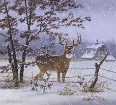 Evening Snowfall - whitetail deer painting by Larry Zach