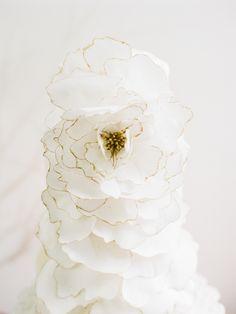 Wedding Cake: Vintage Soul Cakes - http://www.stylemepretty.com/portfolio/vintage-soul-cakes Floral Design: Wildflowers Inc. - http://www.stylemepretty.com/portfolio/wildflowers-inc Photography: Vitor Lindo Photo + Video - www.vitor-lindo.com   Read More on SMP: http://www.stylemepretty.com/2017/02/24/spring-pastel-wedding-inspiration/