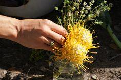 The Secret Garden Feast - Pincushion floral arrangements The Secret Garden, Organic Wine, Photo Story, Floral Arrangements, Herbs, Flower Arrangements, Herb, Bouquet, Center Pieces