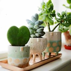 Ceramics ideas cactus Style cute planters Fantastic Free of Charge Ceramics ideas cactus Style cute planters - J A D E & S T O N E : handmade ceramic succulent planter set Excited to present my new creations of this week Product Description Indoor Planters, Diy Planters, Ceramic Planters, Garden Planters, Indoor Cactus, Tall Planters, Modern Planters, Concrete Planters, Hanging Planters