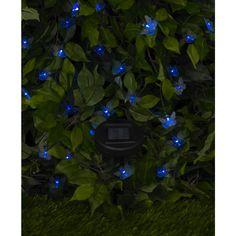 Wilko Party Light Butterfly LED Solar Blue x 50  £9.48