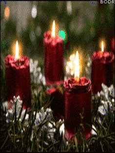 Awesome Easy Christmas Candle Displays are approaching for the holiday season to decorate your house with the trendiest Christmas decorations. Every single year Best Christmas Songs, Christmas Scenes, Christmas Music, Christmas Holidays, Merry Christmas, Holiday Song, Xmas, Christmas Quotes, Christmas Christmas