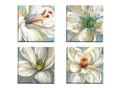 Colorburst I by Sandy Doonan 4 Piece Painting Print on Wrapped Canvas Set
