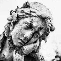 Marble Statues Apollo - Statues Aesthetic Garden - Old Statues Greek - - Cemetery Statues, Cemetery Art, Statue Tattoo, Angel Art, Renaissance Art, Aesthetic Art, Dark Art, Oeuvre D'art, Art Inspo