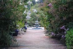 Pasadena's Arlington Garden — Gossip in the Garden