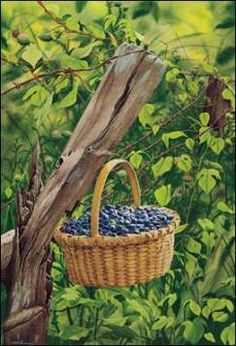 Bob Timberlake - Blueberries - have this in my kitchen