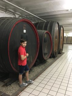 discovering a champagne cellar , during a wonderful homestay Programme ! Adeline, Language School, France, Cellar, Chinese Language, Language Lessons, Learn English, German Language, French