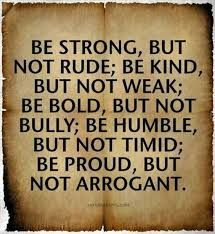 Image result for teddy roosevelt quotes, pity not the fighter