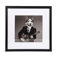 Dog Lucien - Affiches décoratives-Affiches, Déco murale Image imprimée encadrée 40x40cm