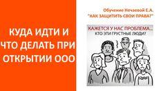 Открыть ООО  Куда идти и что делать  Пошаговая инструкция для самостояте...