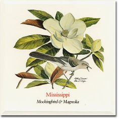 what is the mississippi bird | Mississippi State Flower and State Bird