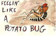 Feelin' like a potato bug