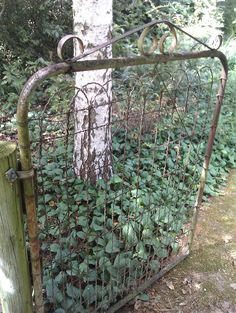 old style garden gate - love this!