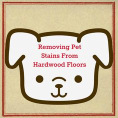 Removing pet stains from hardwood floors: cleaning hardwood floors with pets and getting out pee stains from dogs and cats. Deep Cleaning Tips, House Cleaning Tips, Cleaning Hacks, Cleaning Recipes, Rug Cleaning, Cleaning Products, Hardwood Floor Cleaner, Clean Hardwood Floors, That Way
