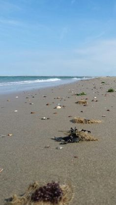 Zand en schelpjes