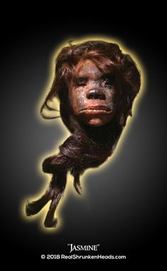 """""""Jasmine"""" Shrunken Head: Please Follow Us on Twitter! You will be notified 24 HOURS IN ADVANCE, OF ALL NEW ODDITIES WE HAVE FOR ACQUISITION!  https://twitter.com/RealOddities"""