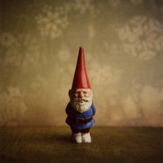 amelie's dad's gnome