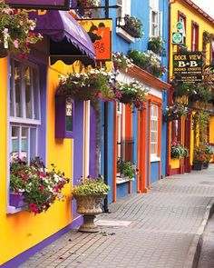 to touch colored doors in Ireland  #ridecolorfully