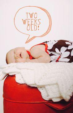 newborn photoshoot #photography