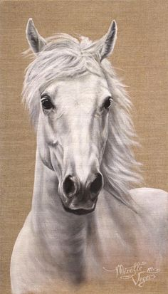 Beauftragt - Horses In Art- Without Riding Tack (Partial Body) - Kunst Horse Drawings, Animal Drawings, Art Drawings, Drawing Art, Most Beautiful Horses, Animals Beautiful, Watercolor Horse, Horse Artwork, Unicorn Art