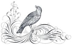 Free Antique Clip Art - Calligraphy Flourishes and Bird - The Graphics Fairy