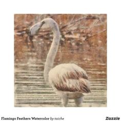 #Flamingo #Feathers #Watercolor #Wood #Print  TRANSFER THIS IMAGE to   #Accessories  #Art  #Posters  #Cards  #Postage  #Clothing  #CraftSupplies  #Electronics  #HomeDecor #OfficeProducts  #UKHashtags #Bizitalk #ATSocialMedia https://www.zazzle.com/z/o13mq?rf=238616195033801520 via @zazzle