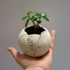Little sphere succulent and cactus planter dia 35 by TikaCeramics. EUR, via Etsy. Ceramic Planters, Ceramic Clay, Ceramic Bowls, Ceramic Pottery, Cactus Planters, Ceramics Projects, Clay Projects, Clay Crafts, Pasta Piedra