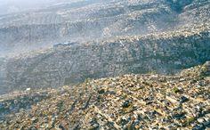 Pakkende beelden tonen gevolgen van overpopulatie | Wetenschap | De Morgen