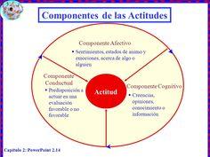 ... Componentes de las actitudes. http://slideplayer.es/slide/143491/
