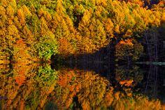 #中部 #長野 #山梨 #Nature 御射鹿池。紅葉の時期にもぜひ訪れてみたい場所です。
