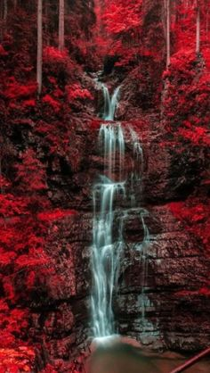 Waterfall and blazing red autumn forest ,Austria by Norbi Bedő Nature, Beautiful All Nature, Amazing Nature, Beautiful Waterfalls, Beautiful Landscapes, Beautiful World, Beautiful Images, Trees Beautiful, Beautiful Forest, Autumn Forest