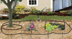 Drip Irrigation Tubing Layout. The most simple and to the point drip system guide. Sprinkler System Design, Sprinkler System Installation, Lawn Sprinkler System, Drip Line Irrigation, Irrigation Systems, Garden Watering System, Diy Garden Projects, Outdoor Projects, Garden Ideas